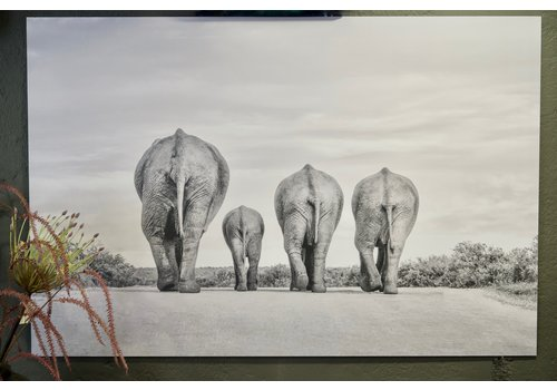 Wanddecoratie 3 olifanten 120 cm
