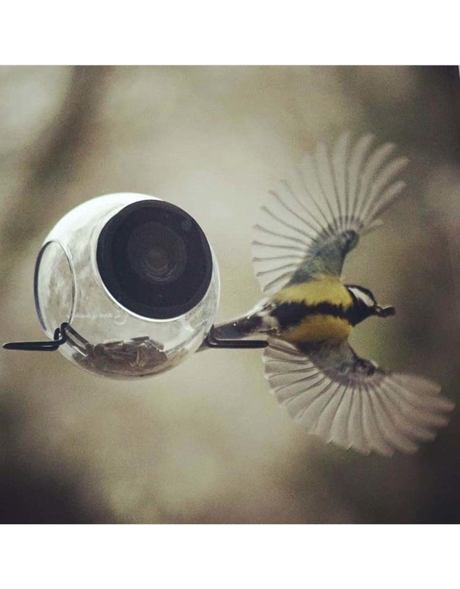 Born in Sweden Birdfeeder