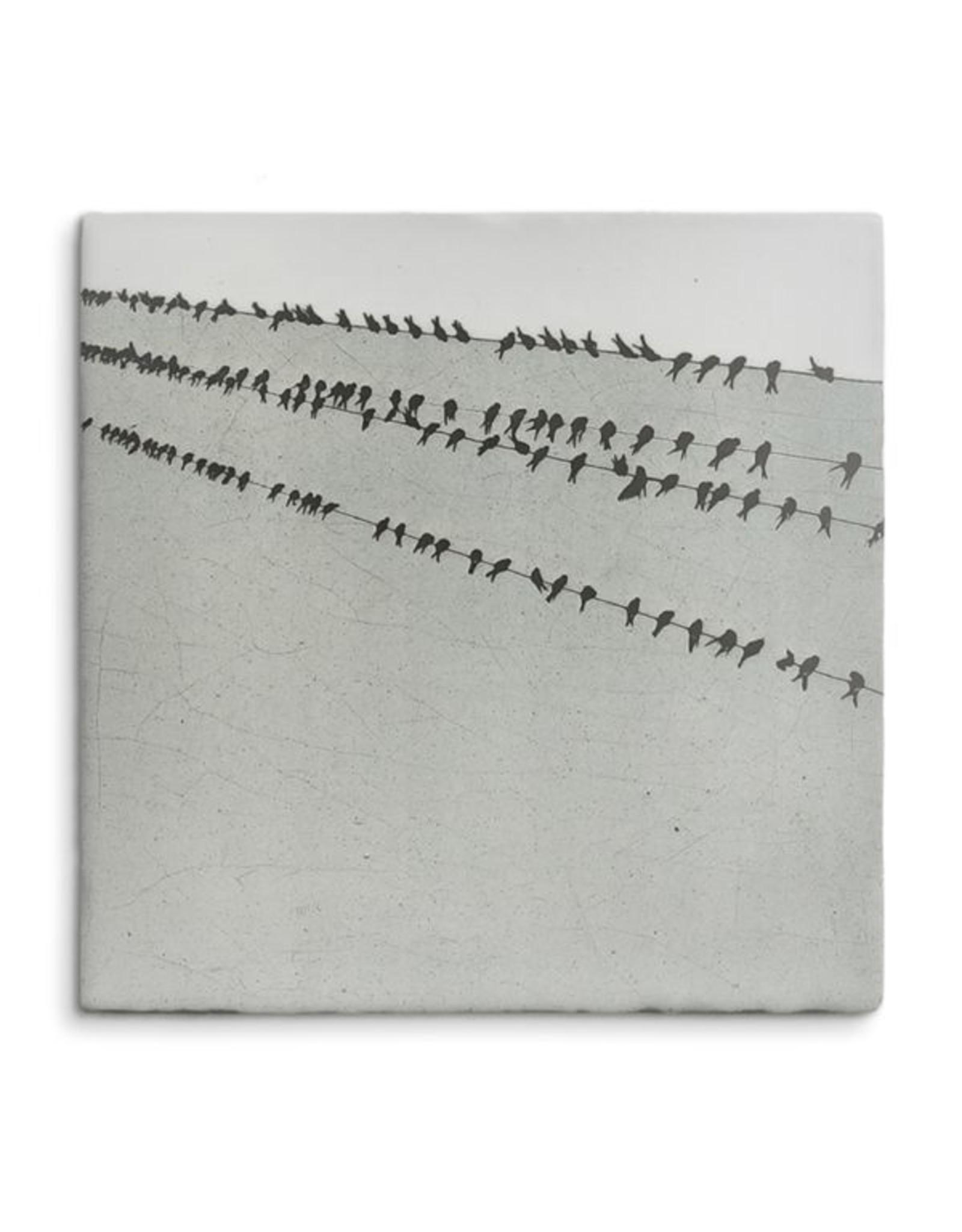 Storytiles Birds in a row