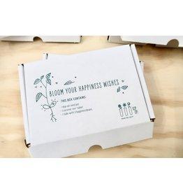 Kop op! Een lief klein doosje - Ik wens je veel beterschap - Kop op! zaaidoosje, kokos zwel tablet,  1 buisje met 3 bonen - Doosje kan door de brievenbus
