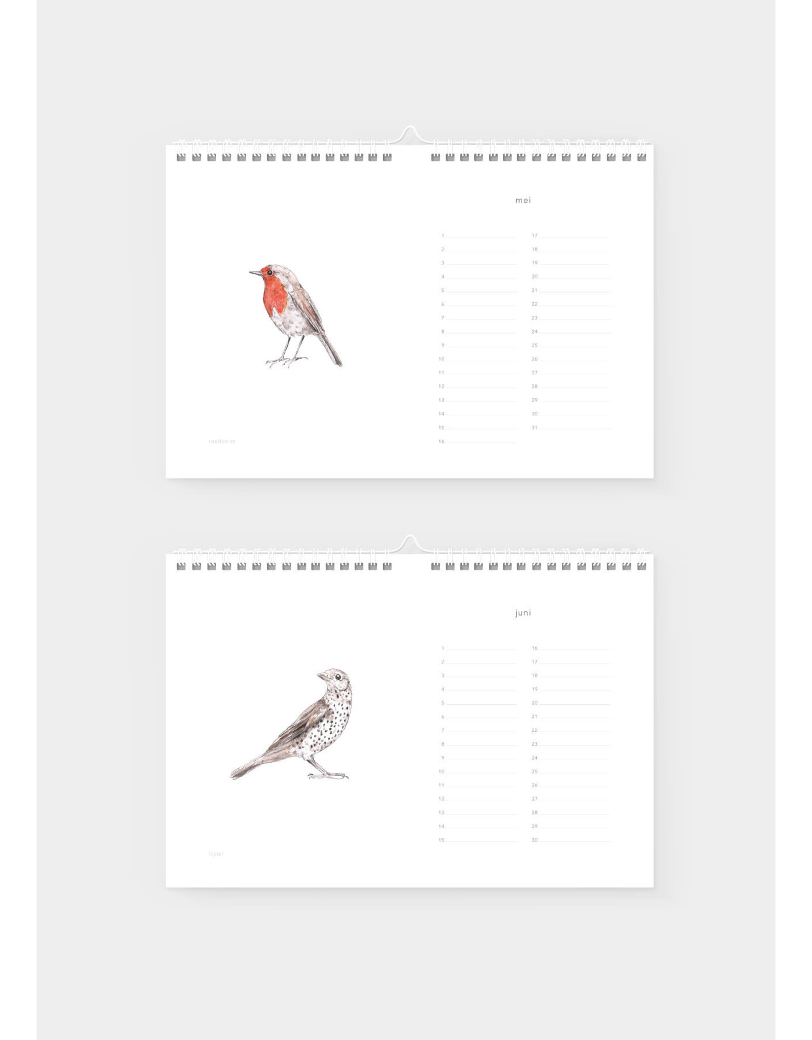 Inkylines Verjaardagskalender | Vogels