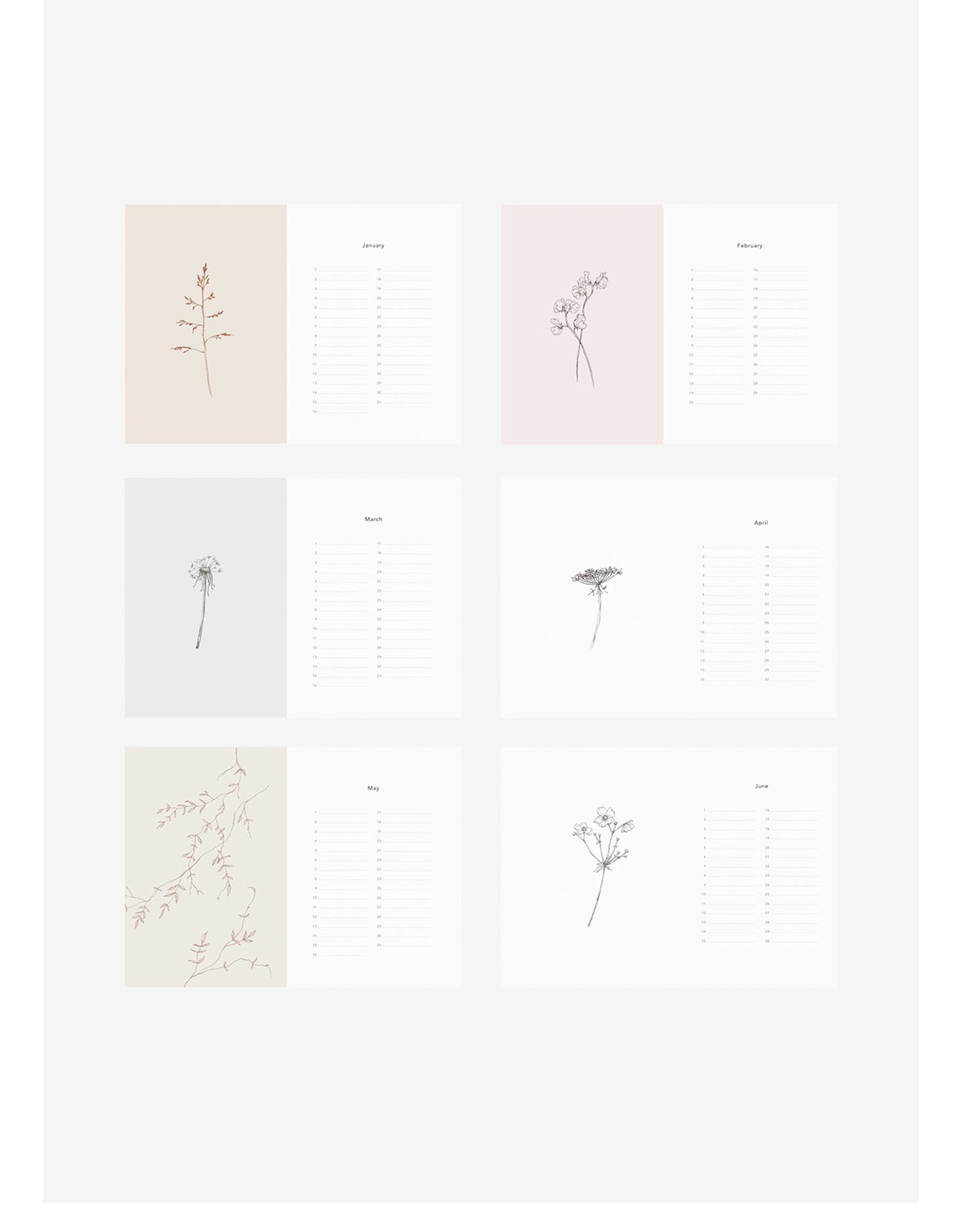 Inkylines Verjaardagskalender - Bloemen