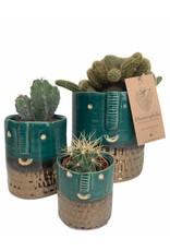 Plantophile Bloempot gezicht | Turquoise  en Goud | Dia 8,5cm