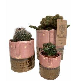 Plantophile Bloempot gezicht | Roze  en Goud | Dia 6,5cm