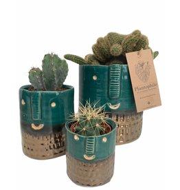 Plantophile Bloempot gezicht | Turquoise en Goud | Dia 6,5cm