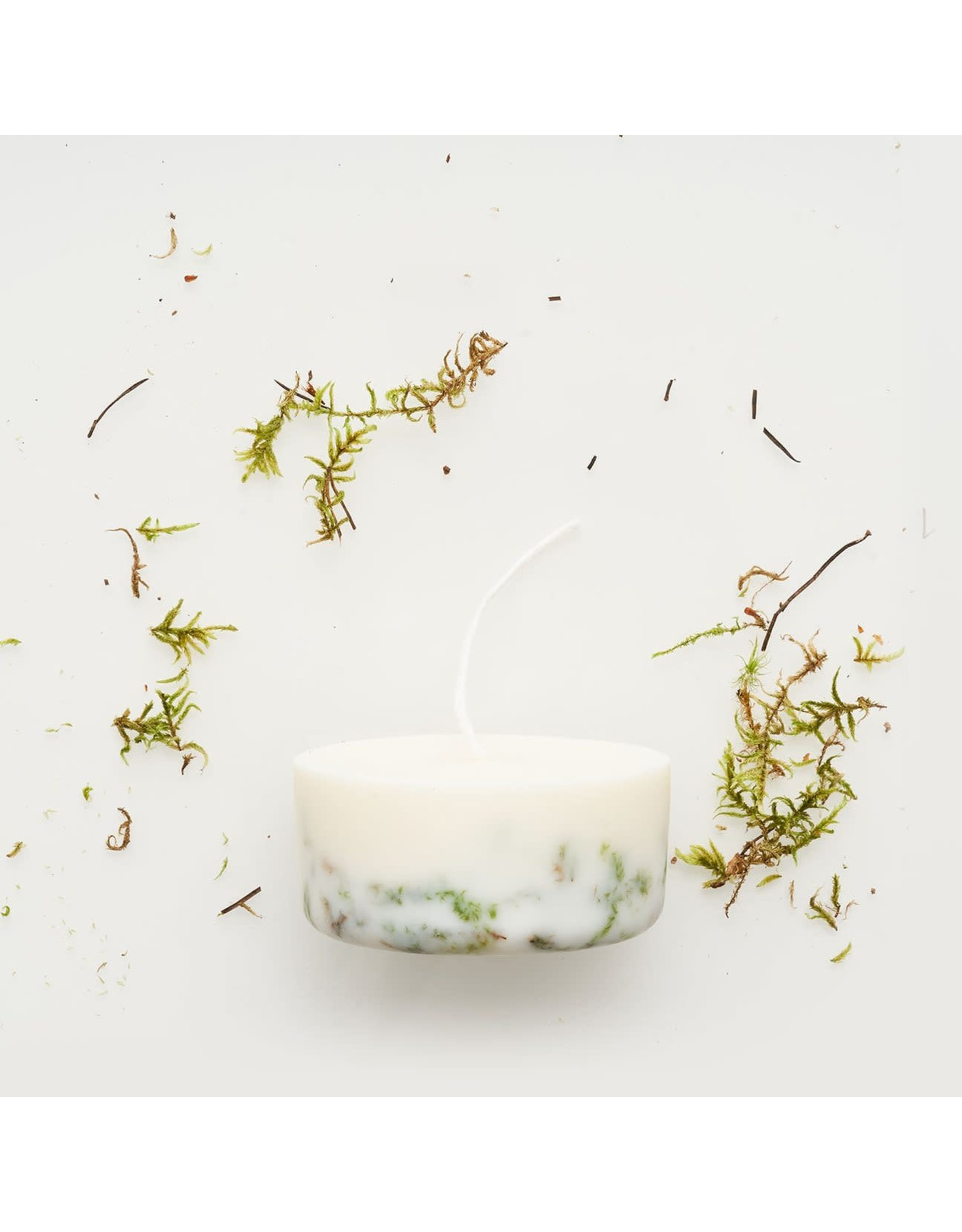 Munio Candela Candle - Moss - Natural Soy Wax - 220ml - Dia 8cm x H 4cm - Burn Time 15h