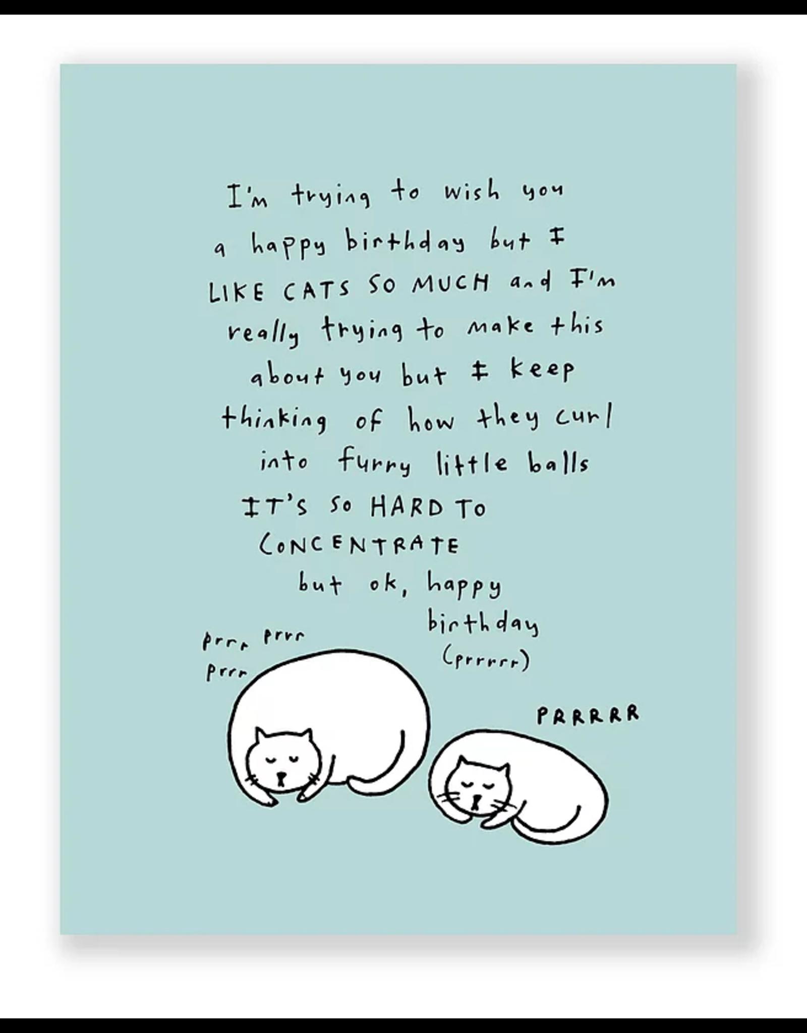 Eat Mielies Wenskaart - Cats Happy Birthday  - Dubbele Kaart + Envelop - 11,5 x 16,5 - Blanco