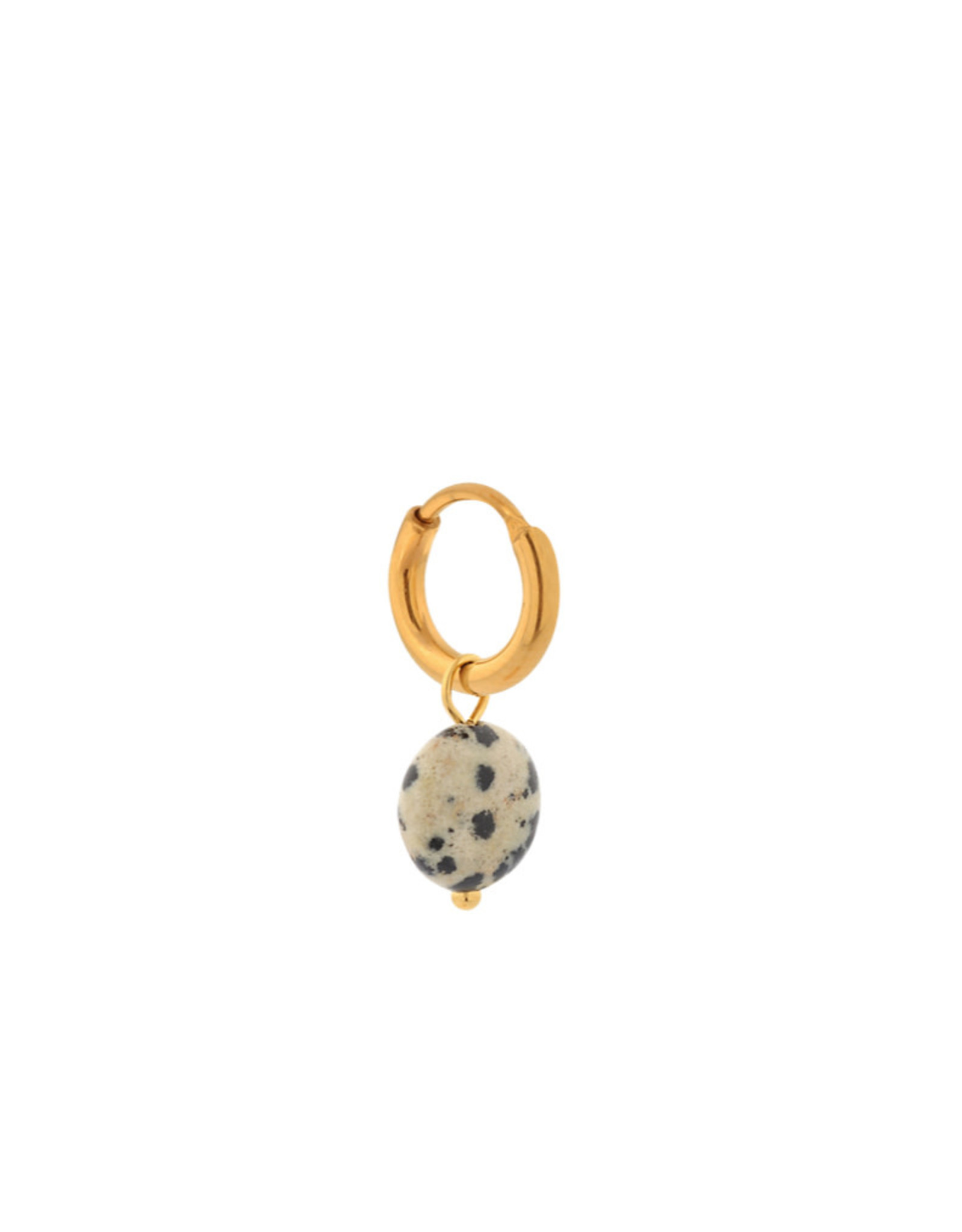 Label Kiki Single Hoop Gold - Dalmatian round 10x5mm  - RVS Verguld