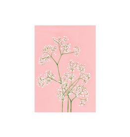 stengun drawings Wenskaart - Gypsophila - Dubbele kaart + Envelope - 10 x 15cm