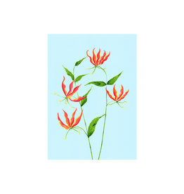 stengun drawings Wenskaart - Flame Lily - Dubbele kaart + Envelope - 10 x 15cm
