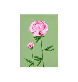 stengun drawings Wenskaart - Peony - Dubbele kaart + Envelope - 10 x 15cm