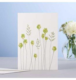 Eloise Hall Wenskaart - Poppyheads & Grass  - Dubbele Kaart + Envelop - 11,5 x 16,5 - Blanco