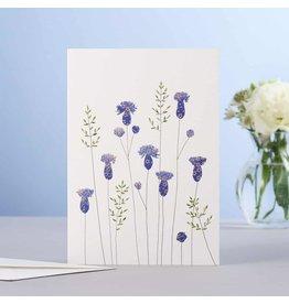Eloise Hall Wenskaart - Thistles  & grass  - Dubbele Kaart + Envelop - 11,5 x 16,5 - Blanco