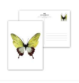 Leo La Douce Wenskaart - Green Butterfly - Postkaart + Envelope - 10 x 15cm
