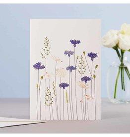 Eloise Halle Wenskaart - Cornflowers & Daisies  - Dubbele Kaart + Envelop - 11,5 x 16,5 - Blanco