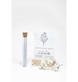 Kop op! 100 Geluksmomenten - Hiep Hiep - Buisje met groeipapier met daarin 100 kleine blijmakers ( Zaadjes) - Veldbloemen