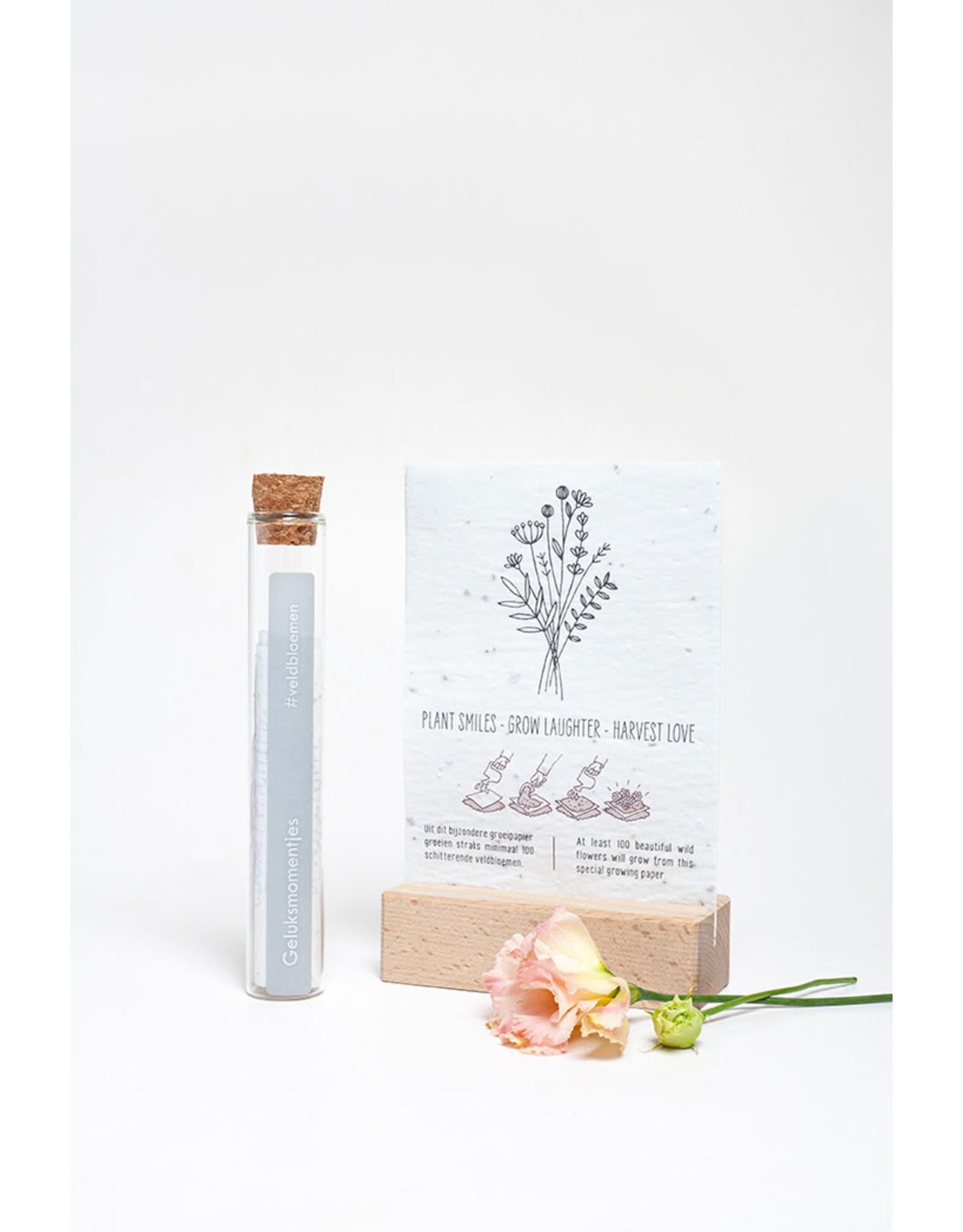 Kop op! 100 Geluksmomenten - Geluksmomentje - Buisje met groeipapier met daarin 100 kleine blijmakers ( Zaadjes) - Veldbloemen