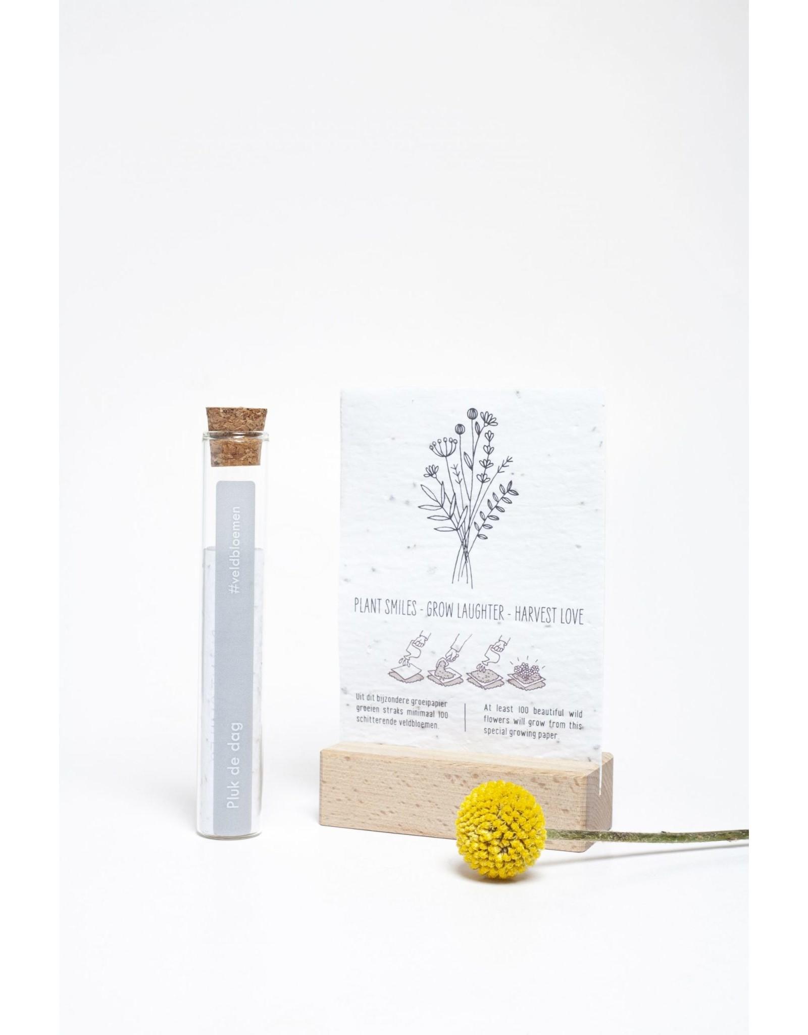 Kop op! 100 Geluksmomenten - Pluk de dag - Buisje met groeipapier met daarin 100 kleine blijmakers ( Zaadjes) - Veldbloemen