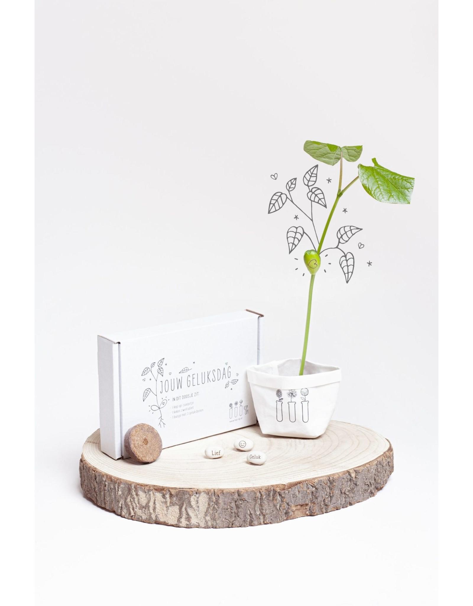 Kop op! Een lief klein doosje - Jouw Geluksdag! - Kop op! zaaidoosje, kokos zwel tablet,  1 buisje met 3 bonen - Doosje kan door de brievenbus