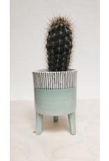 Plantophile Bloempot 3 pootjes - Groen & Verticale lijntjes - Ø 10 x H 13 cm