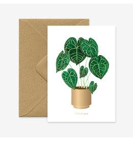 ATWS Wenskaart - Anthurium Clarinevium plant - Dubbele kaart + Envelop - 11,5 x 16,5 - Blanco