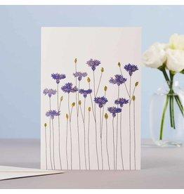Eloise Hall Wenskaart - Cornflowers - Dubbele Kaart + Envelop - 11,5 x 16,5 - Blanco