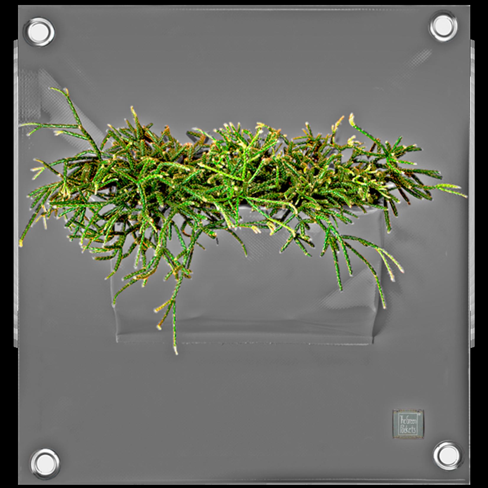 The Green Pockets PEVA - grijs