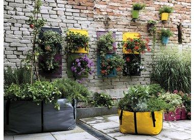 Plant & Tuin