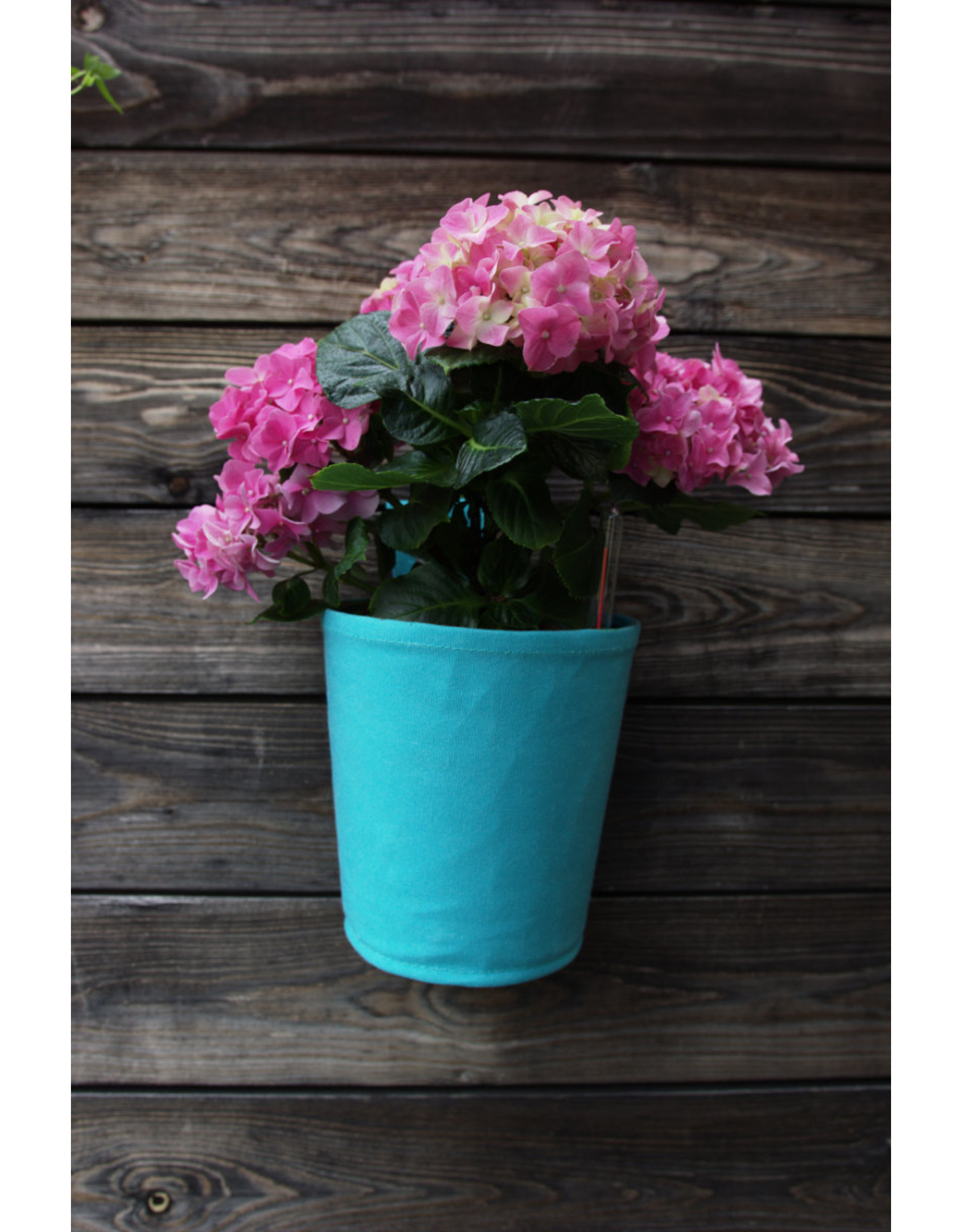 Blooming Walls The green pot Spring Turquoise