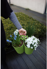 Blooming Walls The green pot Spring Green