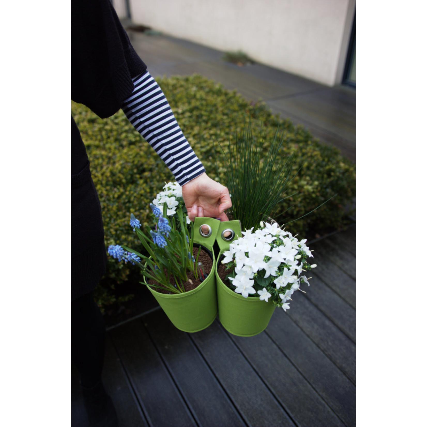 The green pot Spring Green