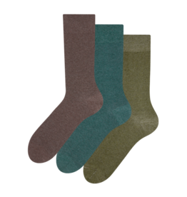 Recycled cotton socks 3-pack Hunter
