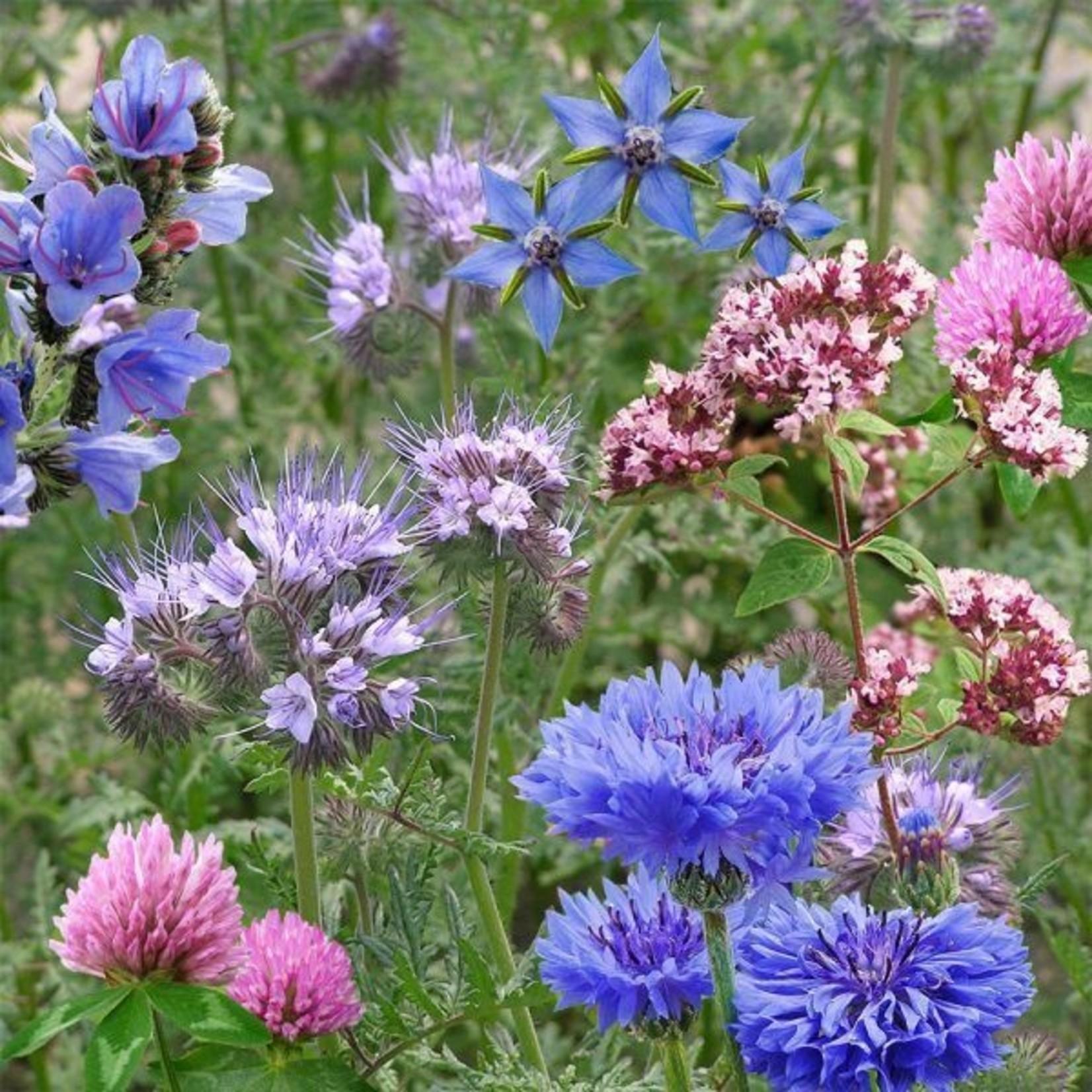 Bloemengranaat Bijen