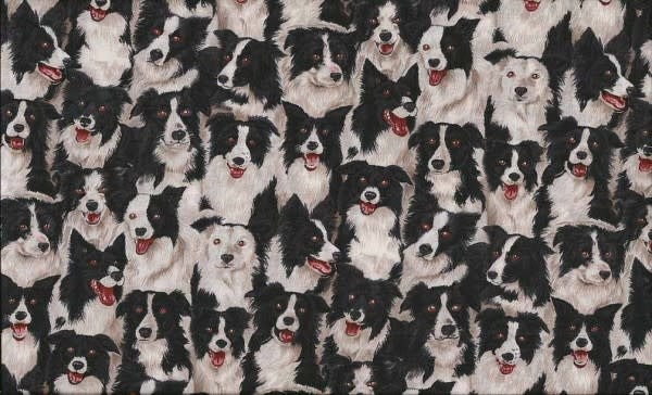 Makower Border Collie - 7761