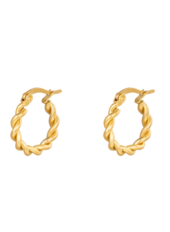 Earrings hoops twisted