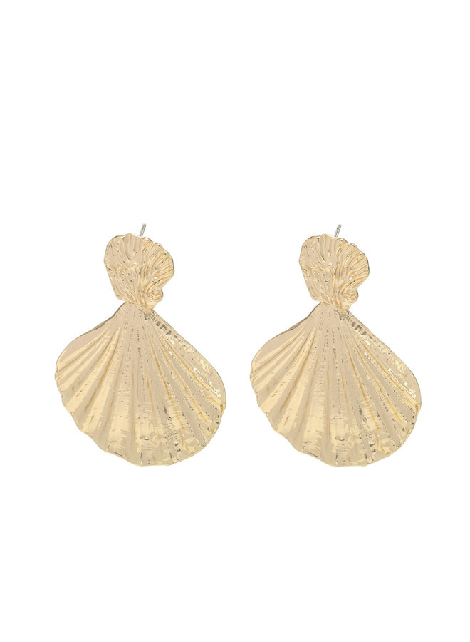 Earrings big shells