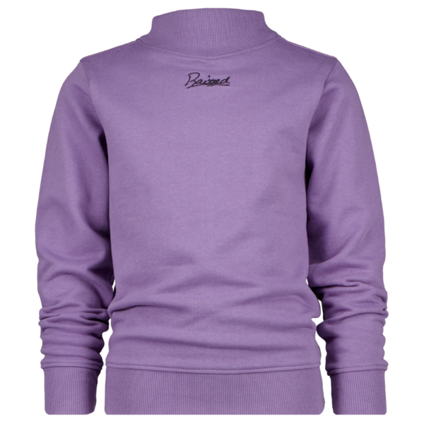 Raizzed Raizzed sweater DUNDEE grey purple