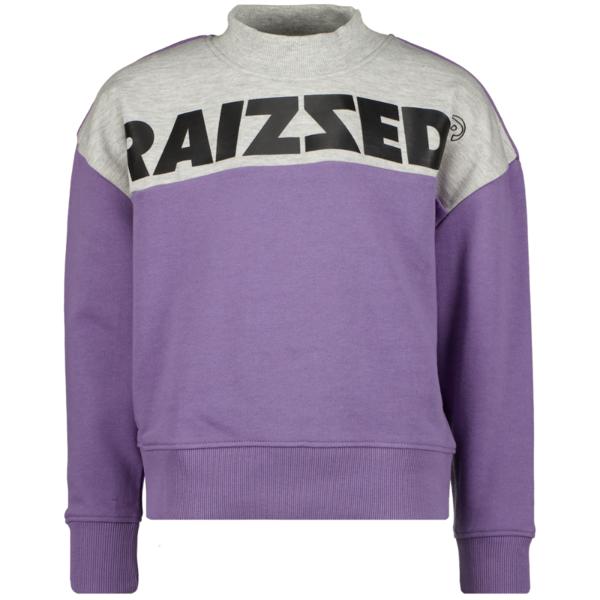 Raizzed Raizzed sweater MADRAS grey purple