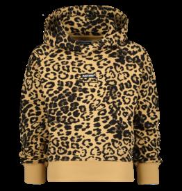 Raizzed Raizzed sweater POP-UP Nova multi brown