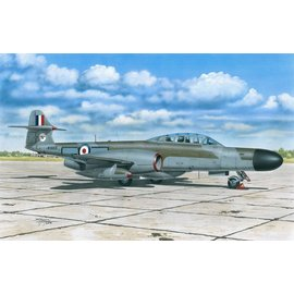 Special Hobby Special Hobby - A.W. Meteor NF MK.12 - 1:72