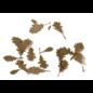 AK Interactive Oak dry leaves / vertrocknete Eichenblätter