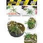 AK Interactive Jungle Plants / Dschungel-Pflanzen 1:32 & 1:35