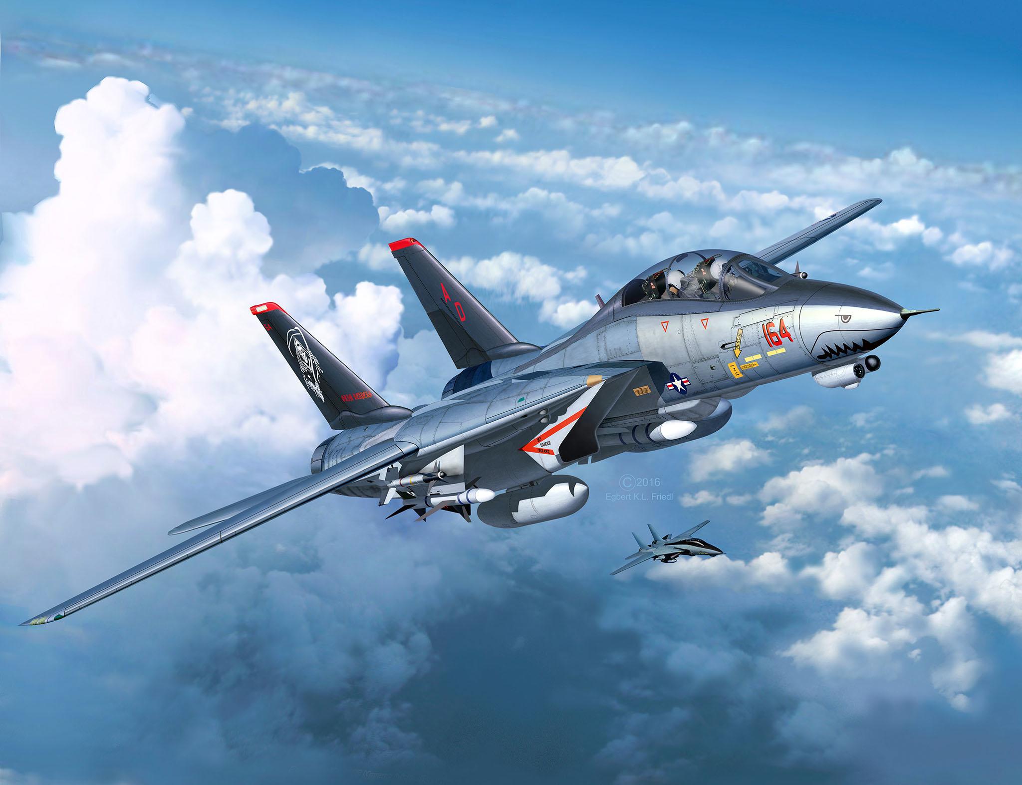 Revell   Grumman F 20D Super Tomcat   2020