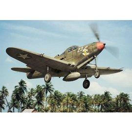 BRENGUN Brengun - Bell P-39 D/F/K Airacobra - 1:144