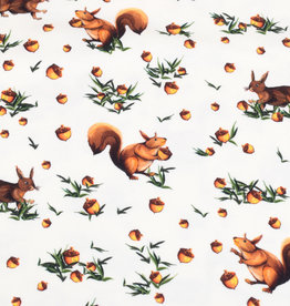 100x150 cm cotton jersey digital print squirrels offwhite -Limited Edition-