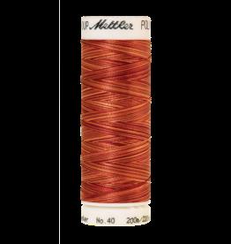 Mettler Mettler Poly Sheen Multi 40 200m 9934