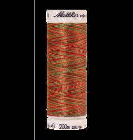 Mettler Mettler Poly Sheen Multi 40 200m 9939