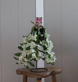 Dendrobium Nobilé Flower Shower | wit
