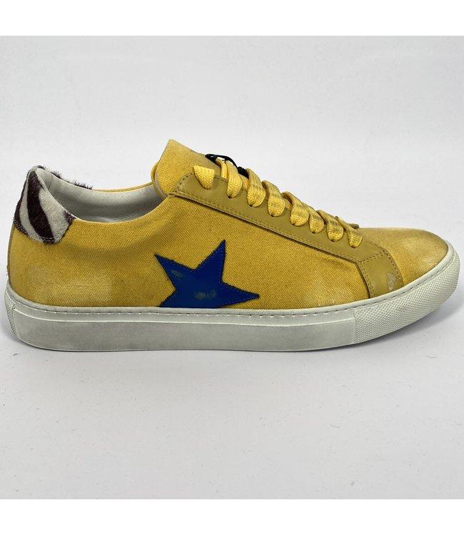 Macchia J Canvas Star Shoes