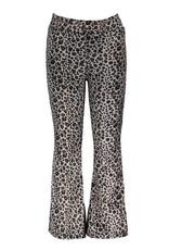 Moodstreet Moodstreet 5601 flared pants velours nice grey